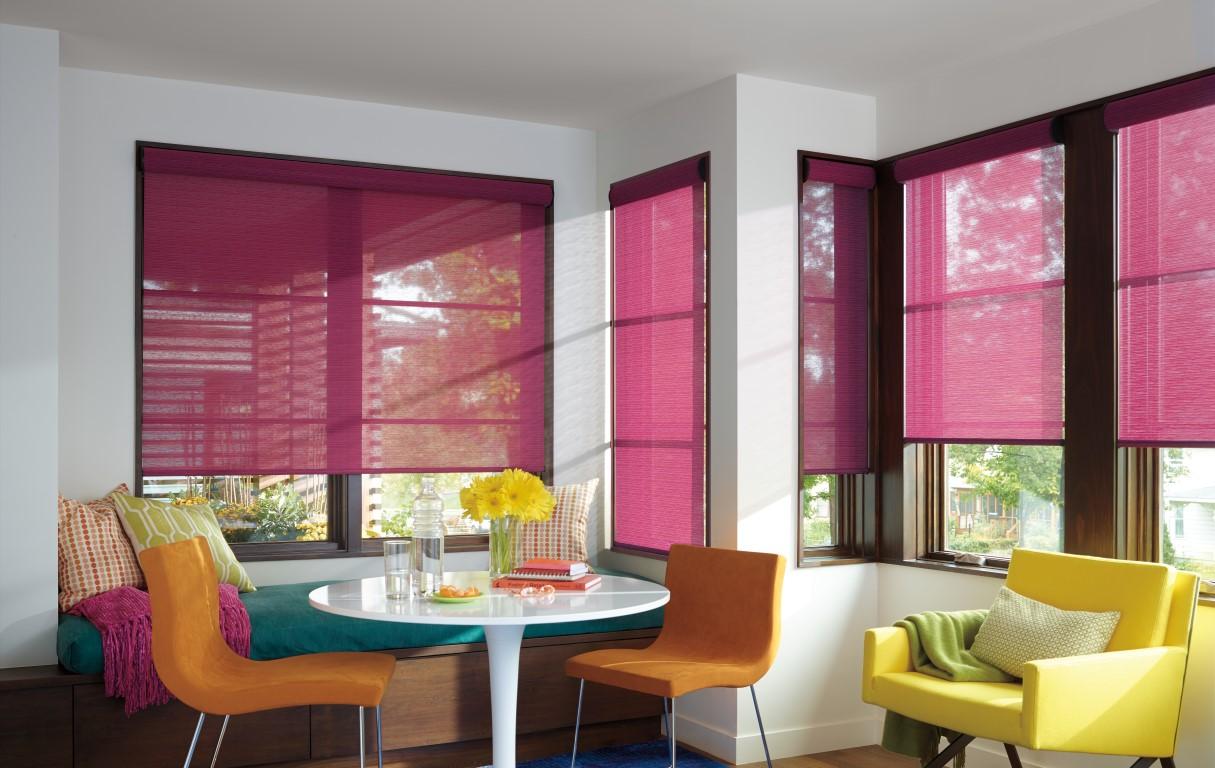 Designer Roller Shades on wood kitchen ideas, skylight kitchen ideas, window kitchen ideas, roman shades kitchen ideas,
